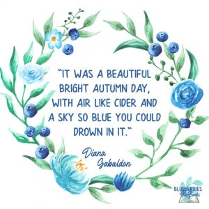 """""""It was a beautiful bright autumn day, with air like cider and a sky so blue you could drown in it."""" -Diana Gabaldon Outlander Quotes"""